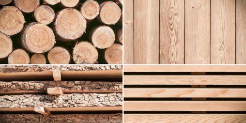Nachwachsender Rohstoff Naturholz